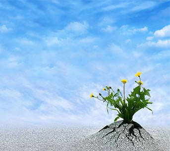 How to build a resilient small business